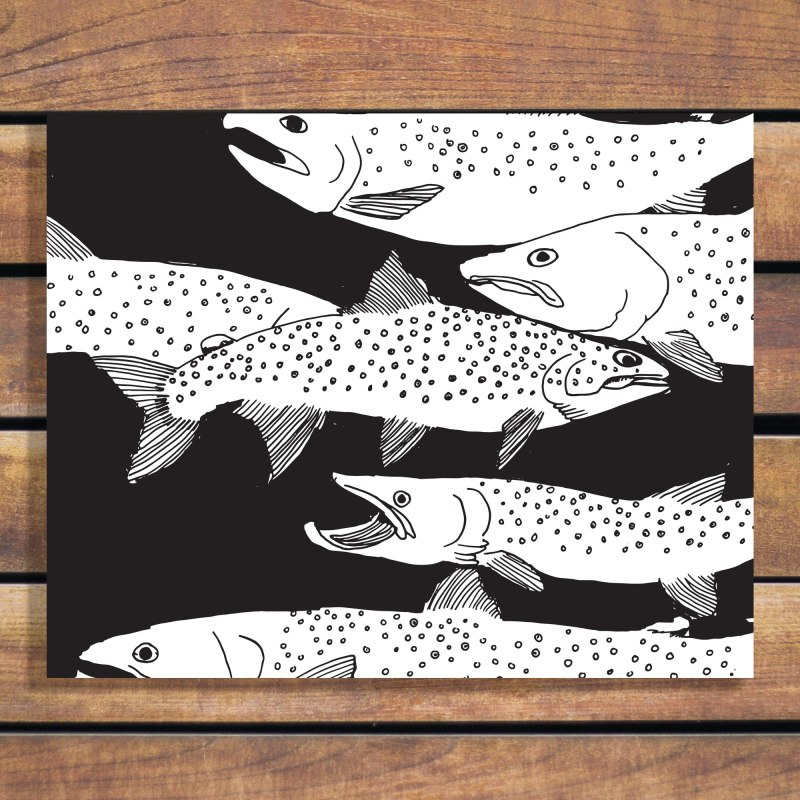 Annex Collections - Art Prints - Bull Trout in Black and white