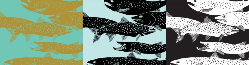 Bull Trout Illustration Art Print by Brina Schenk in Fernie, BC Canada - Canadian Custom Colour Art, Digital and Prints