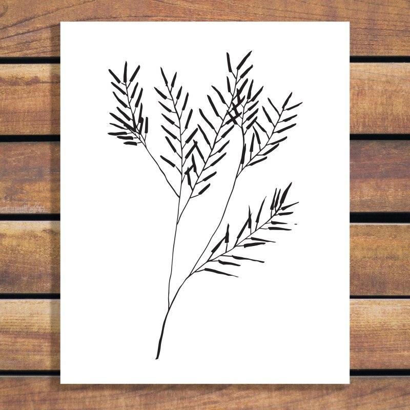 Regrowth, Simple Branch Illustration Art Print by Brina Schenk - Download vector art - wall art