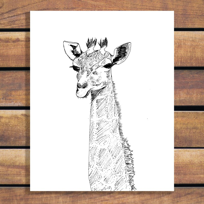 Unimpressed Giraffe Illustration - animal portrait sketch in black and white