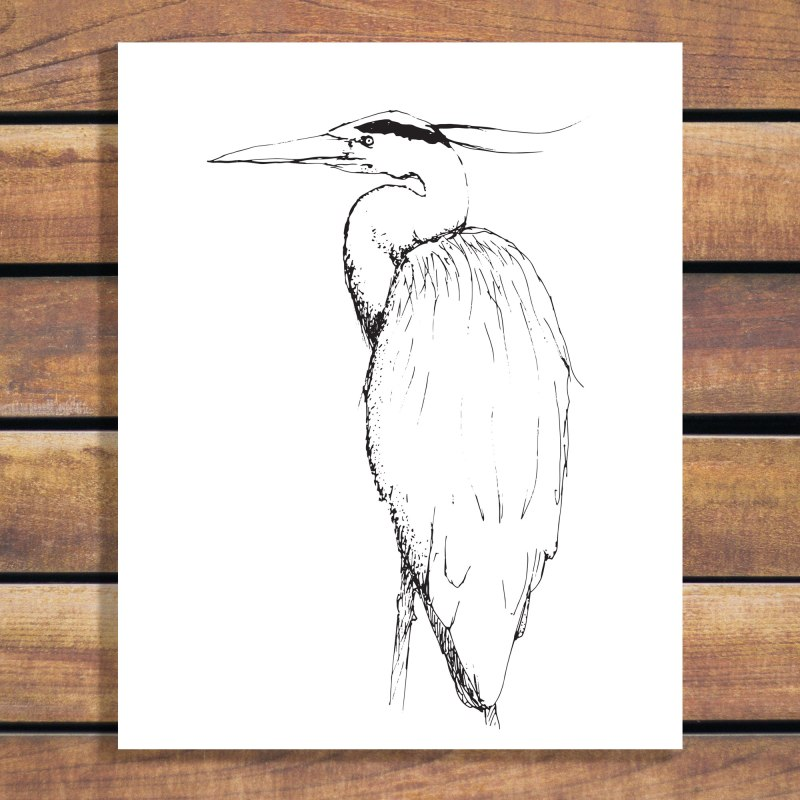 Bird Sketch Art by Brina Schenk - Heron Art Poster Illustration