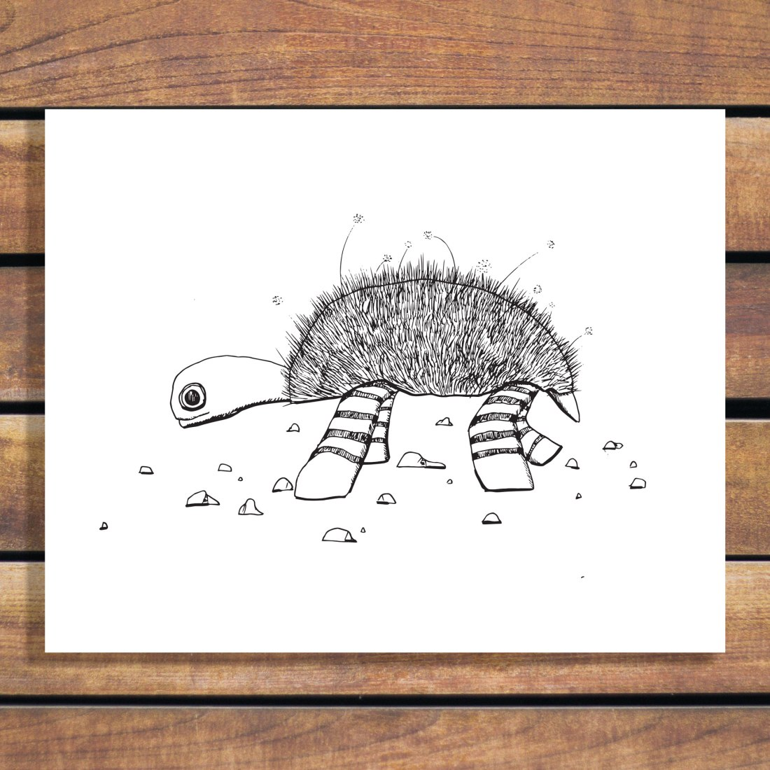 The Lazy Turtle Illustration by Brina Schenk - Hand Drawn animal illustrations art prints - download, customize and print.