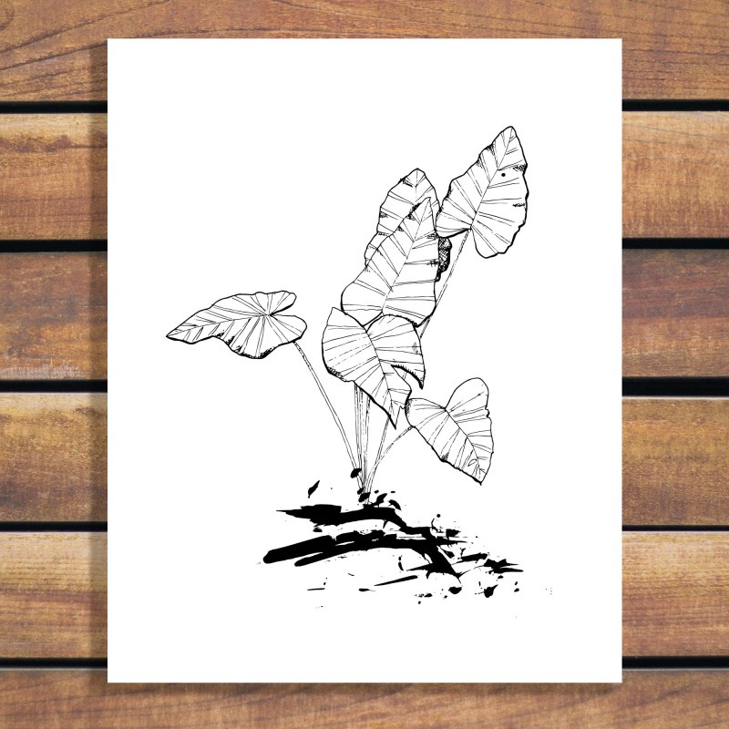 Tropical Plant Illustration Art Print - Black and White with custom colour options