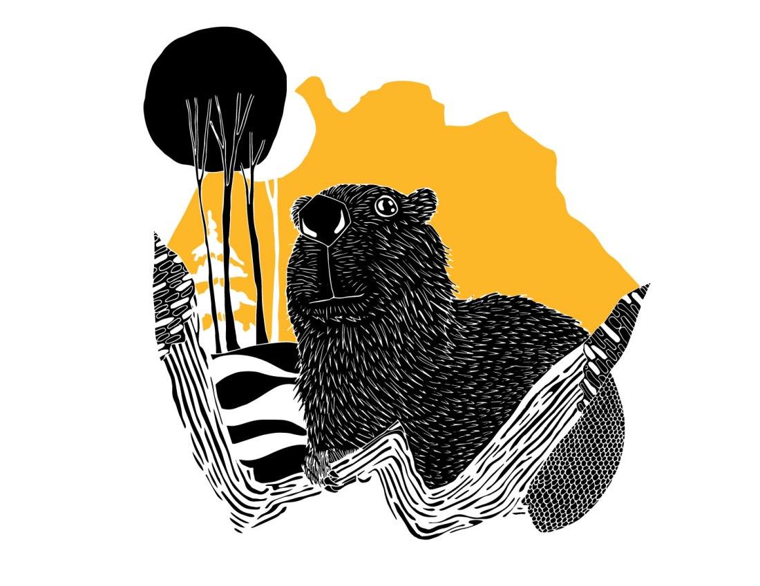 Brina Schenk Wapiti Music Festival Artist 2019 - beaver and the three sisters