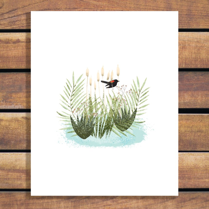 Red-Winged Black Bird in Cattails Illustration