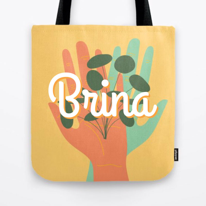 Brina Schenk on Society6 - artwork, illustrations on fresh and cool home products