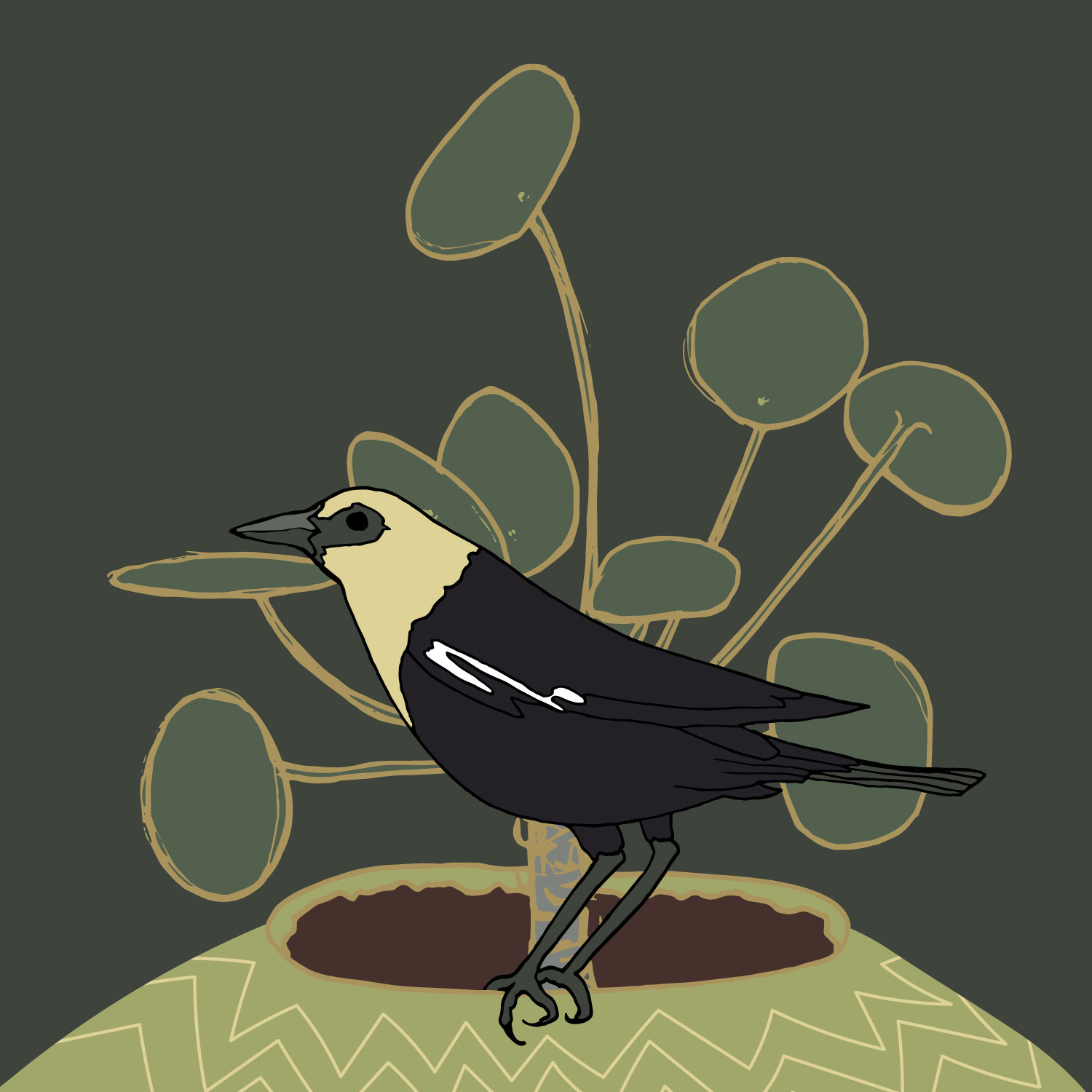 Birds & Botanicals – Yellow-Headed Blackbird and Pilea Peperomioide